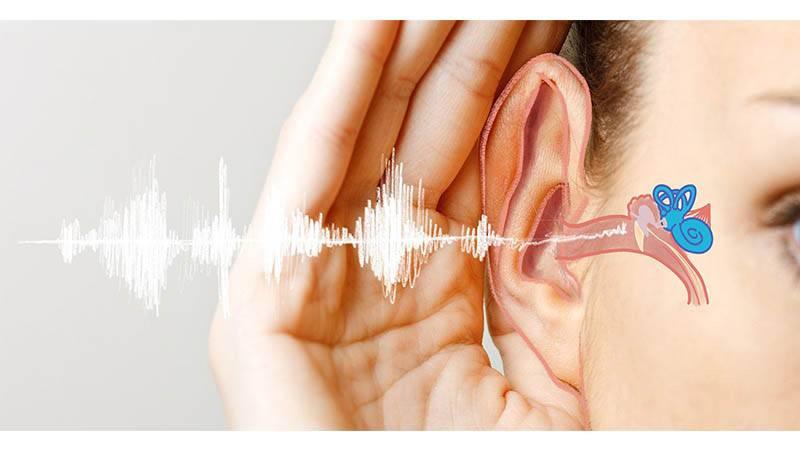حس شنوایی و اختلالات ایجاد شده در آن